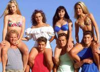 Beverly Hills 90210, Jason Priestley, Shannen Doherty, Jennie Garth, Ian Ziering, Gabrielle Carteris, Luke Perry, Brian Austin Green, Tori Spelling